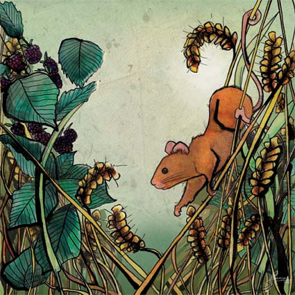 Mouse in the Cornfield illustration by Hannah Foley www.owlingabout.co.uk