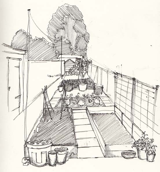 Sketch of Stan's garden by Hannah Foley. All right reserved (www.owlingabout.co.uk)
