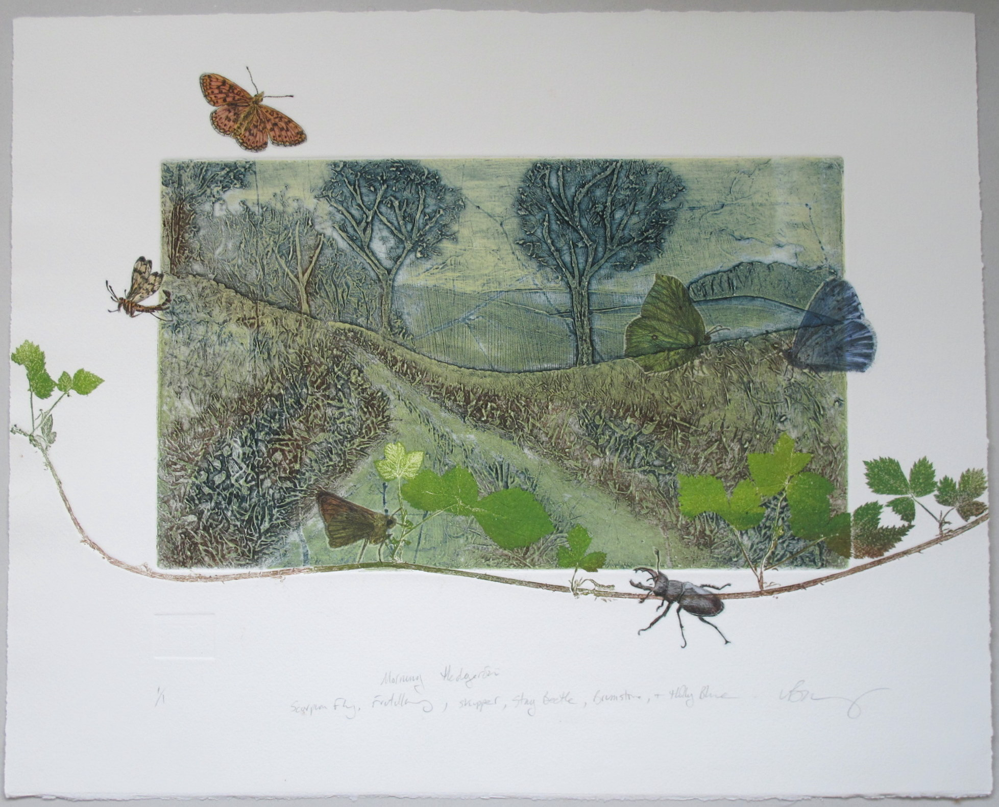 Morning hedgerow: scorpion, fly, fritillary, skipper, stag-beetle, brimstone, holly-blue by Lynn Bailey (www.lynnbailey.co.uk)