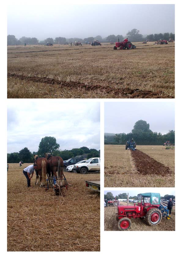 ploughing_match