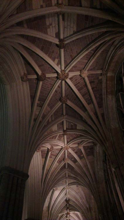 Photograph of a cathedral roof by Hannah Foley. All rights reserved (www.owlingabout.co.uk)