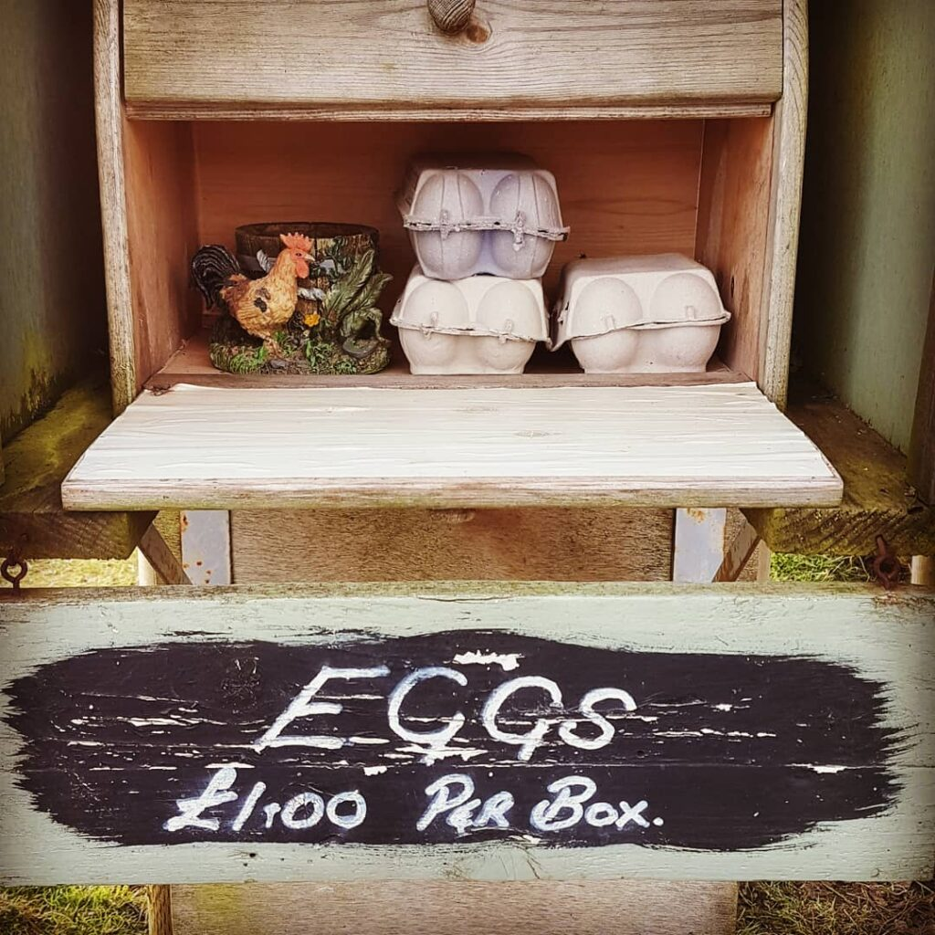 Egg honesty box in Devon. Photograph by Hannah Foley. All rights reserved (www.hannah-foley@co.uk)