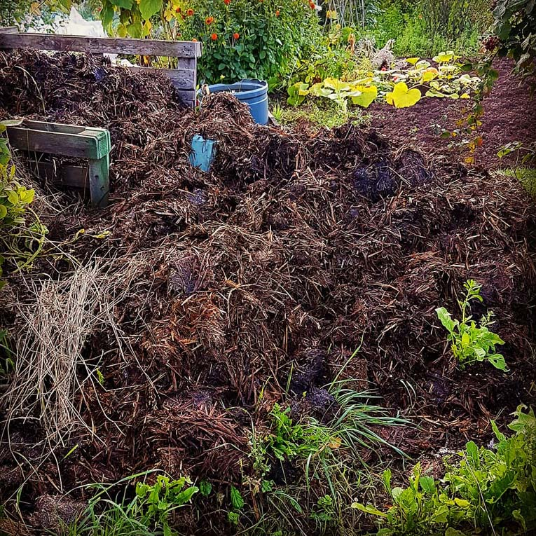Pile of manure at an allotment by Hannah Foley. All rights reserved (www.hannah-foley.co.uk).