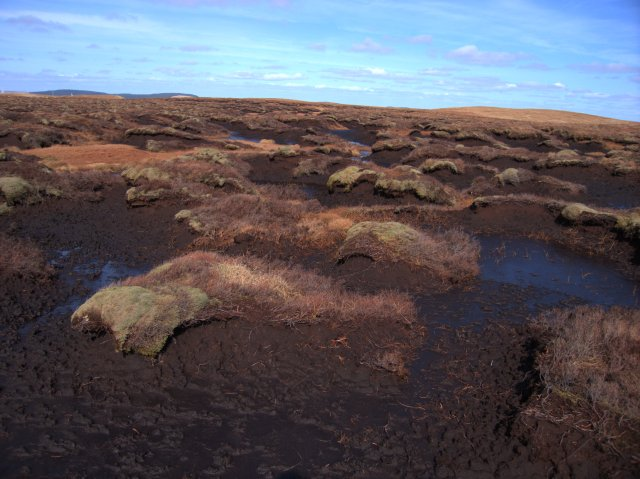 Peat Hags. Image used under Creative Commons License.