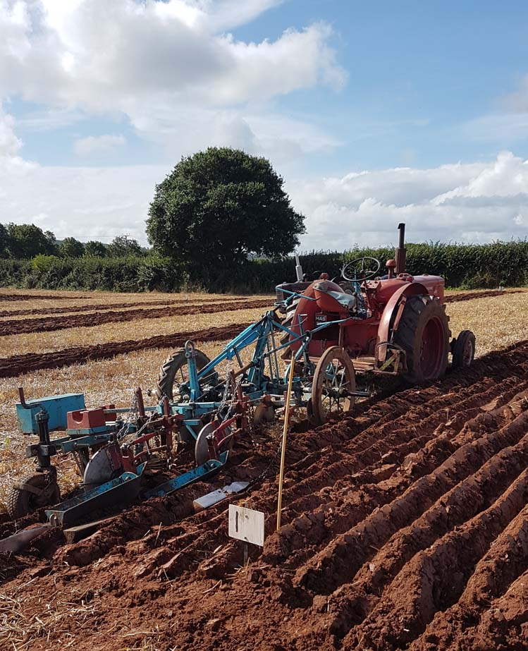 Vintage tractor at a Devon Ploughing Match by Hannah Foley. All rights reserved (www.hannah-foley.co.uk)